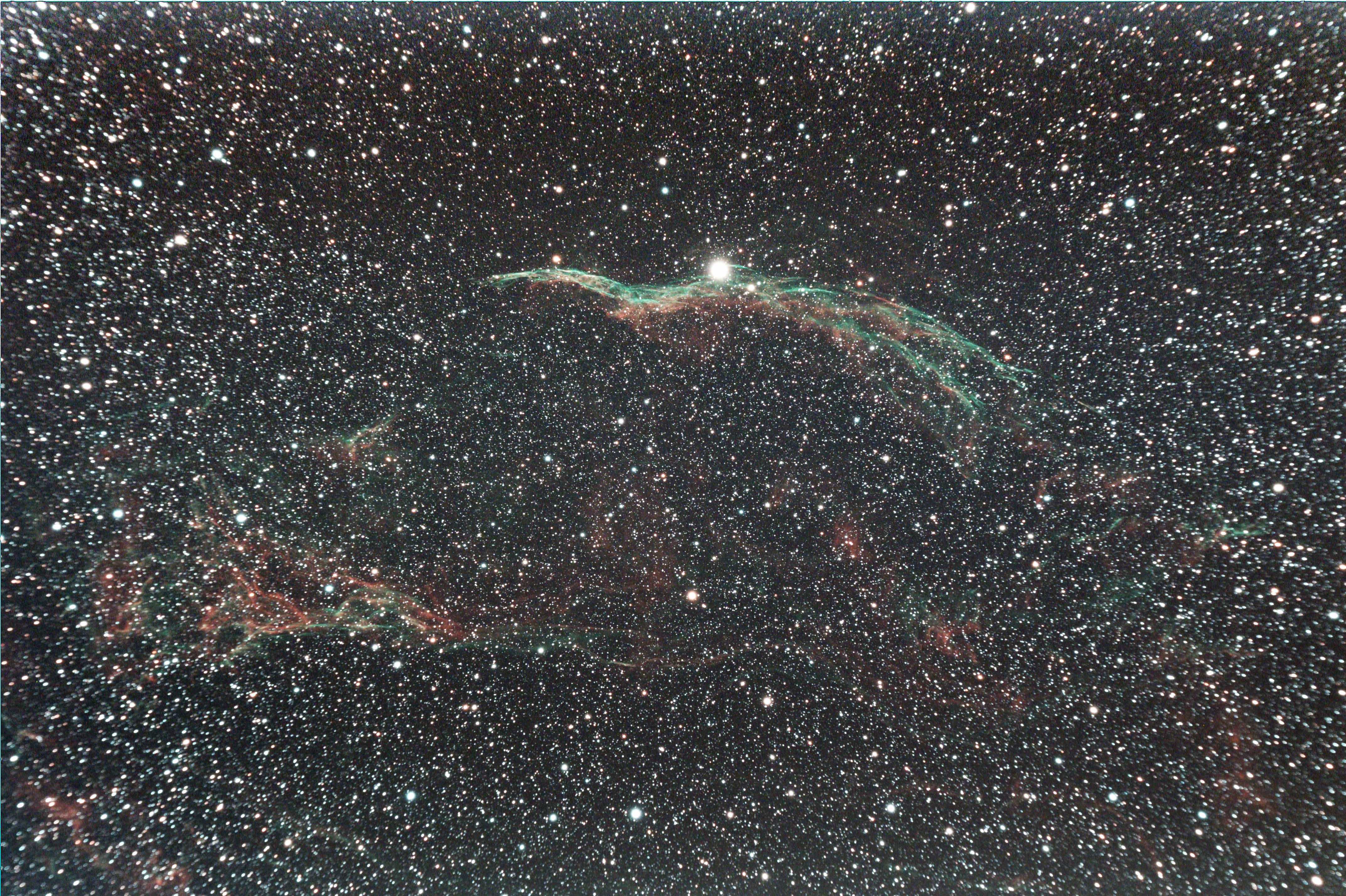 cygnus%20(2).jpg