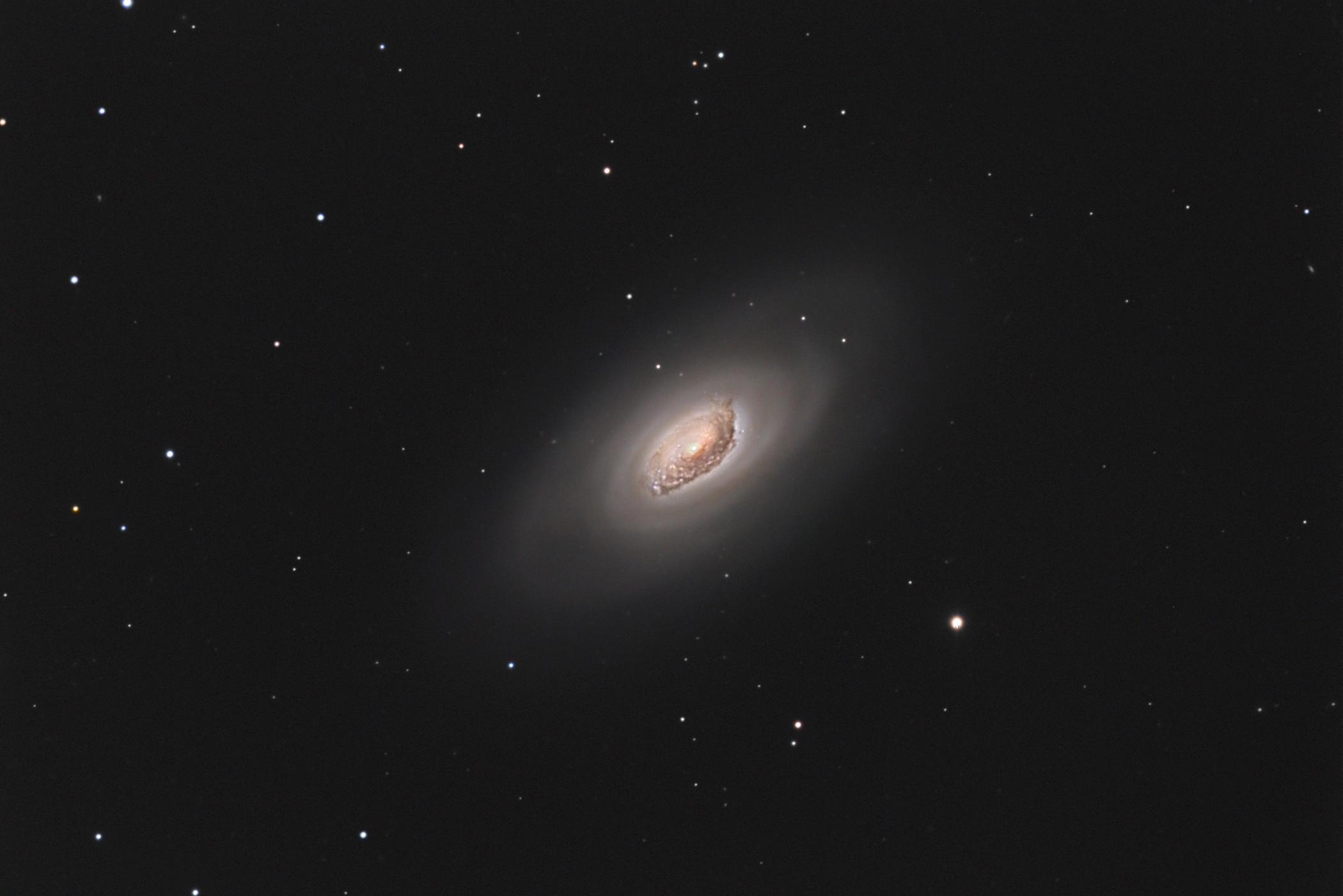 """Messier 64 au C11HD à 0.5""""/pix M64_c11"""