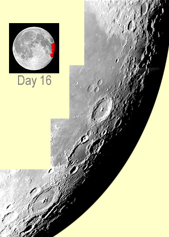 MOON - Day 16