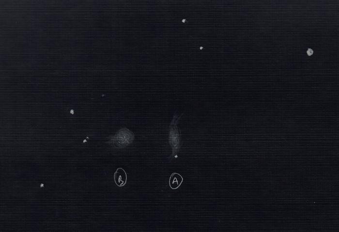 0006b.jpg