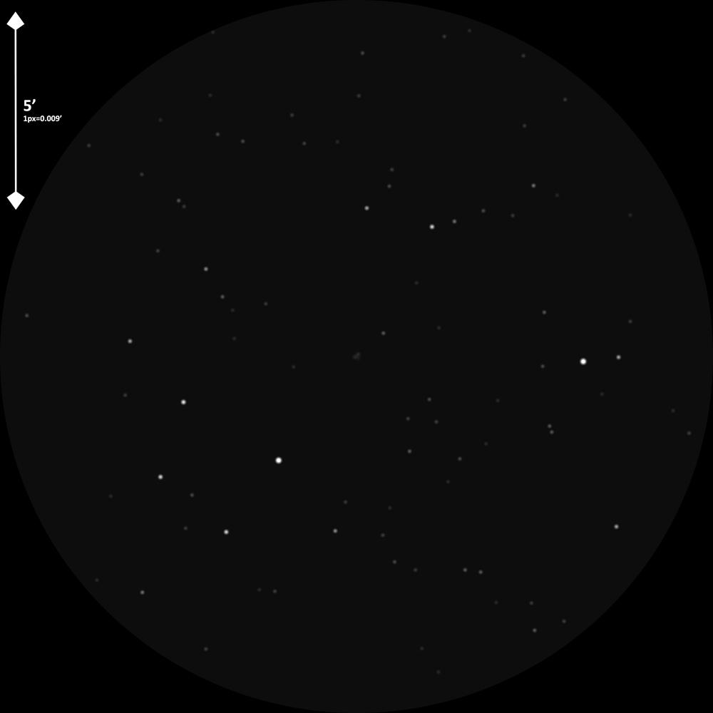 n2433_daaoT445x271-0.300_YPrbdo.jpg