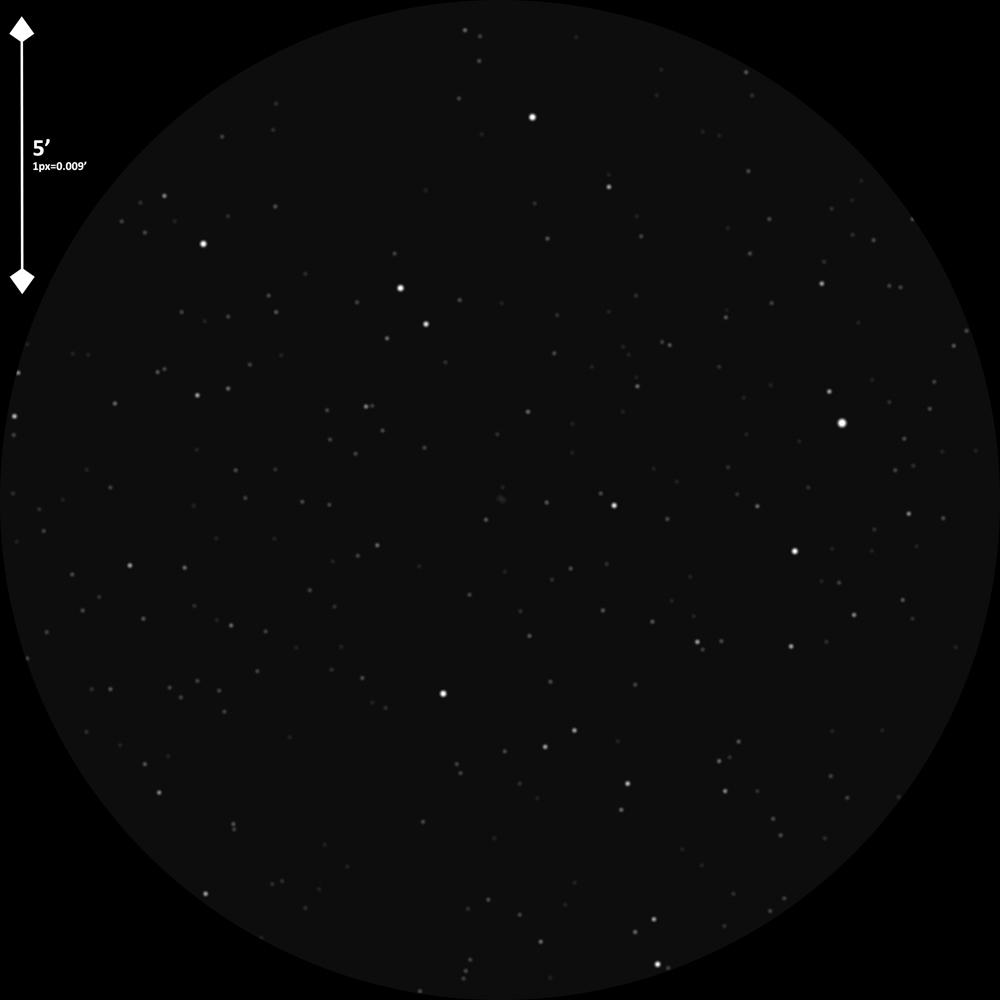 pk086-081_daaoT445x271-0.300bdo.jpg