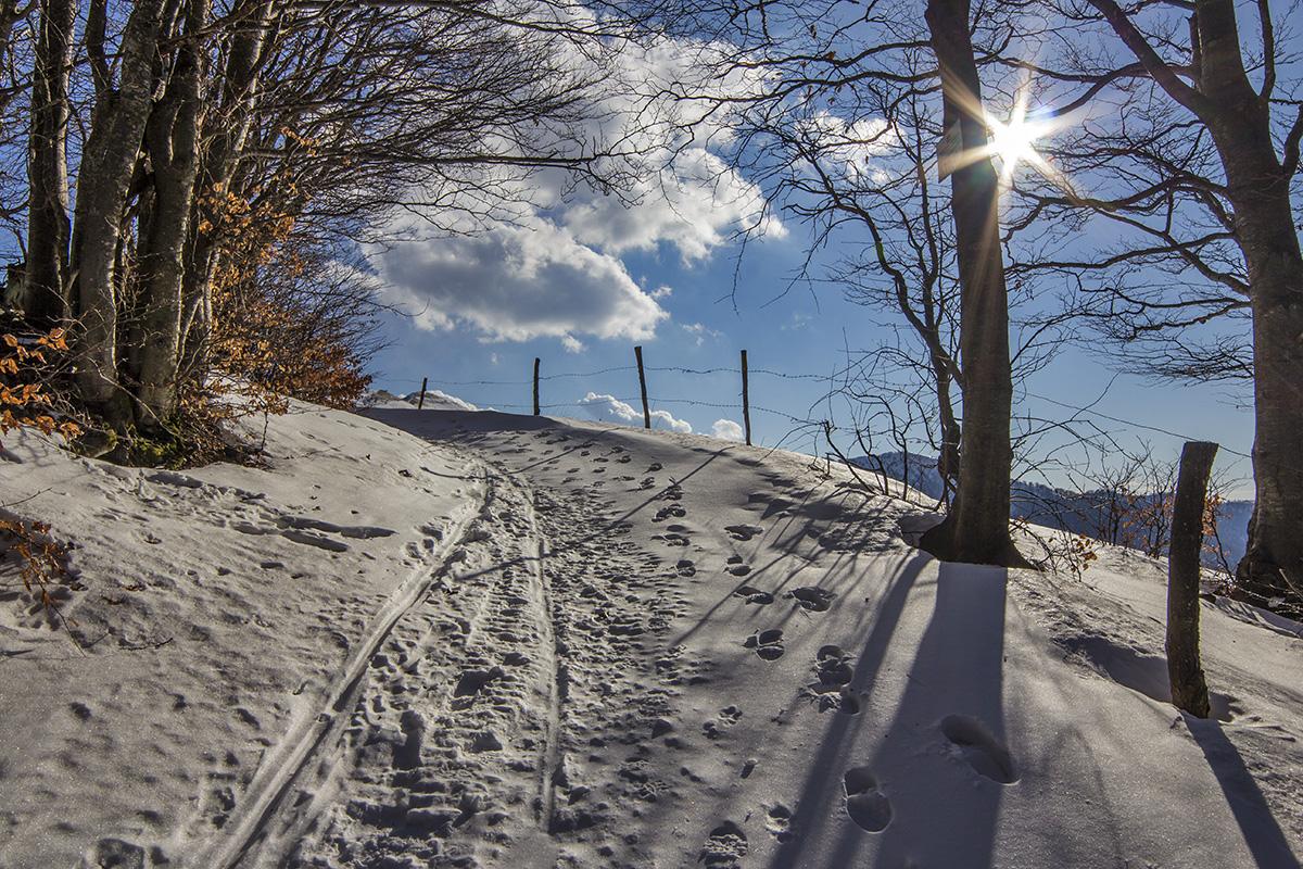 Snowed path. Canon 60D, Samyang 14mm f/2.8, 1/400 s, f/11, ISO 100.