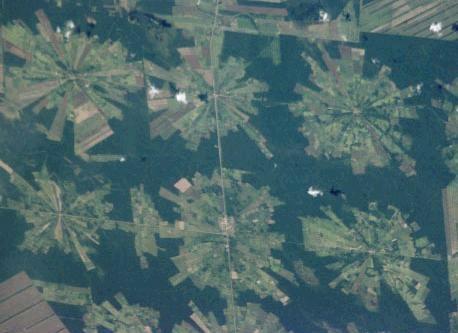 La déforestation recule en Amazonie