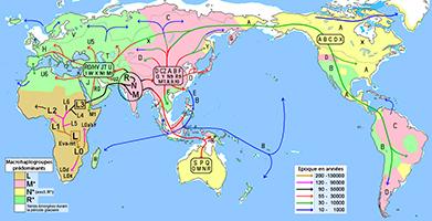 Carte Du Monde Il Y A 40000 Ans.L Origine Et L Avenir De L Homme