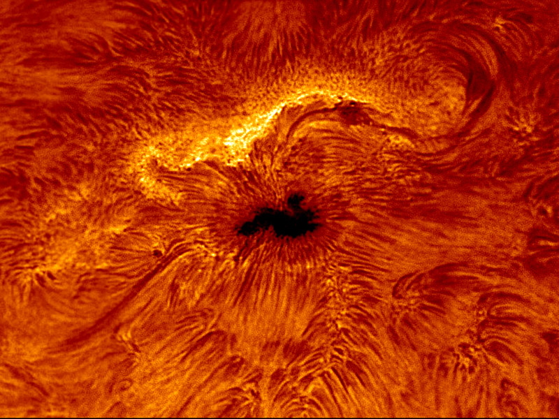 reports - the market of solar telescopes