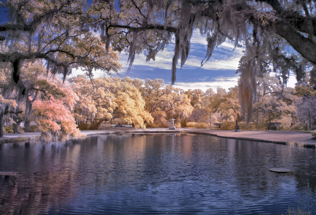 Ir Photography Taken By Mark Hilliard With A 630 Nm Ir