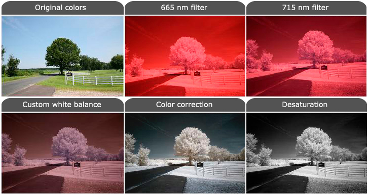 Infrared And Ultraviolet Photography 3