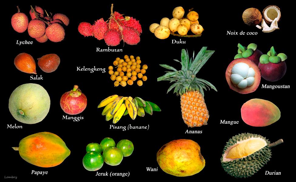 Quelques fruits exotiques : Antilles - Australie - Indonésie