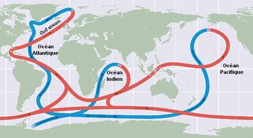 ocean-tapis-roulants.jpg