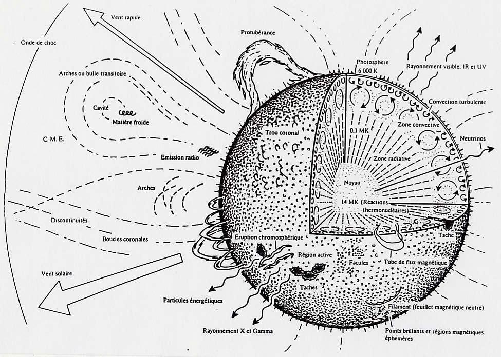 la structure du soleil et ses rayonnements