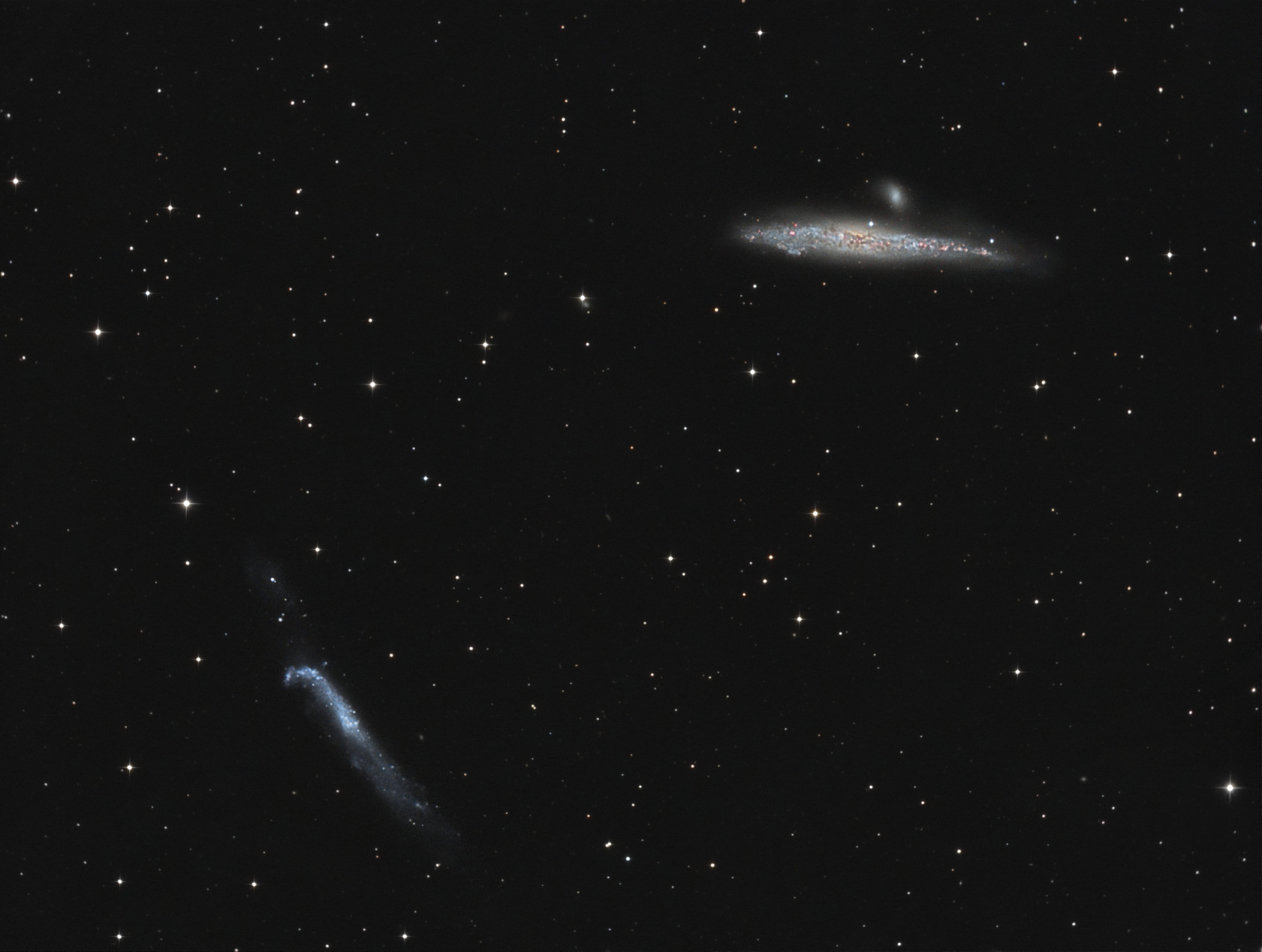 http://www.astrosurf.com/micastro/images/NGC4656-4631.jpg