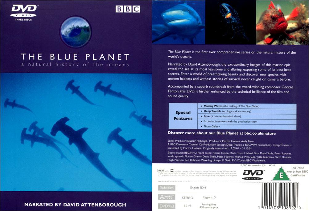 pedro r 39 s marine biology page animal biology. Black Bedroom Furniture Sets. Home Design Ideas