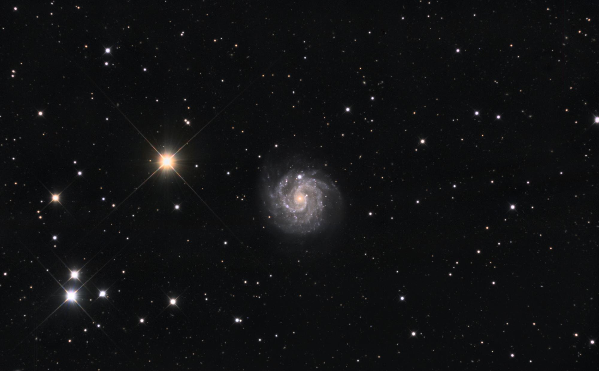 NGC3184LRVB-V2-Final1.thumb.jpg.706834ab4dfd580af690f45c36d657e0.jpg