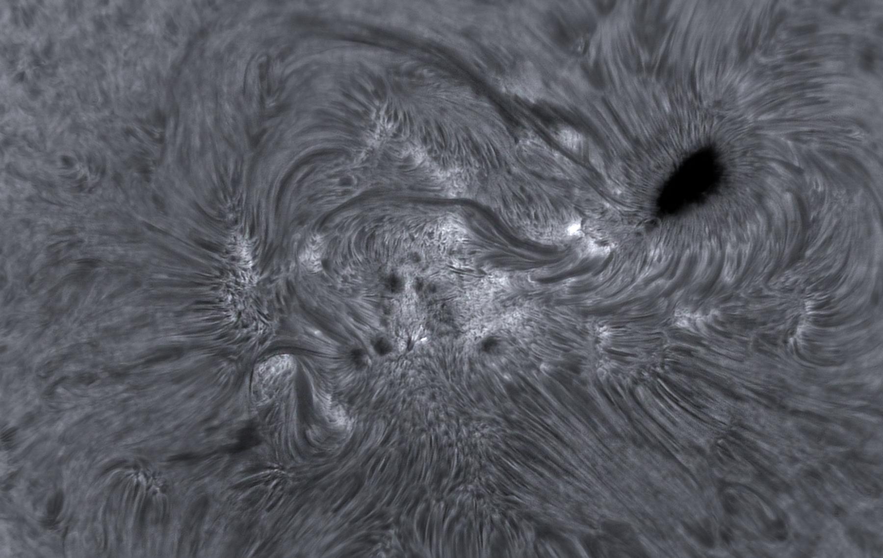 Soleil H-alpha sur AR2665 - 11/07/2017