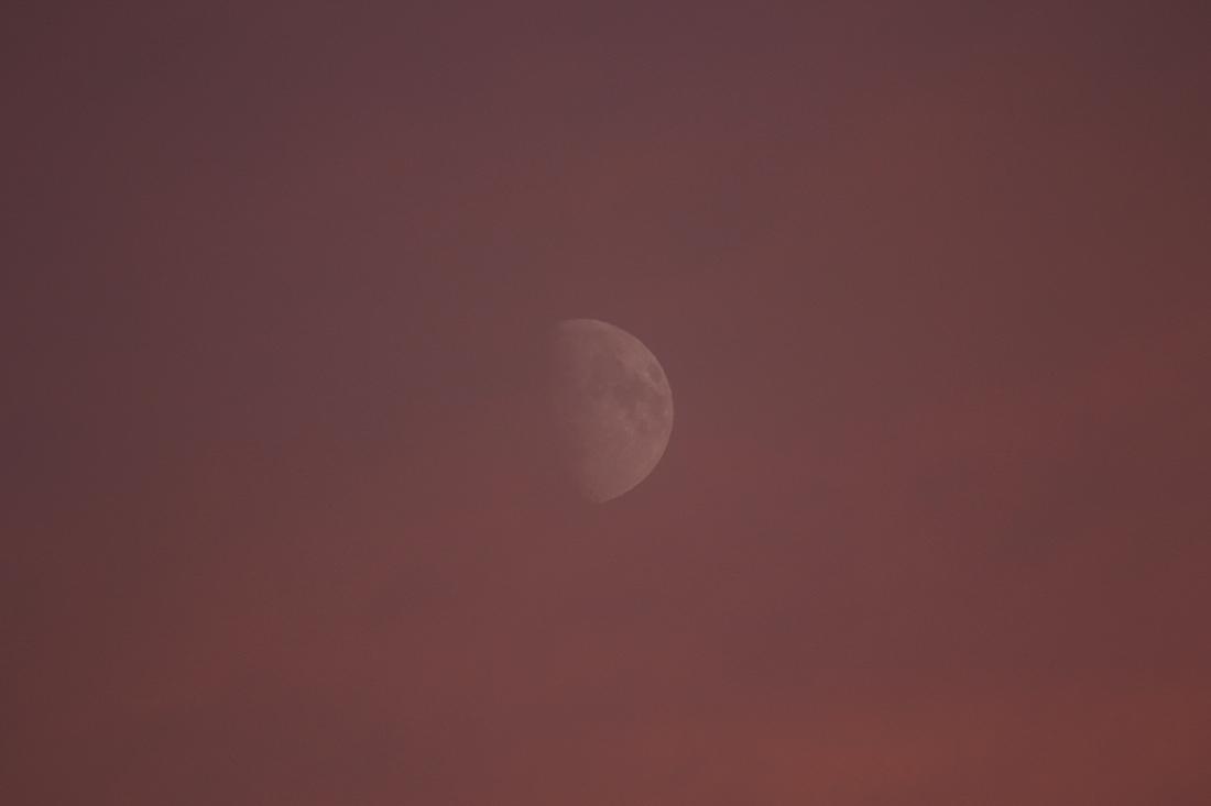 la lune , le soir du 29/10/2017 (00033273/91.JPG)