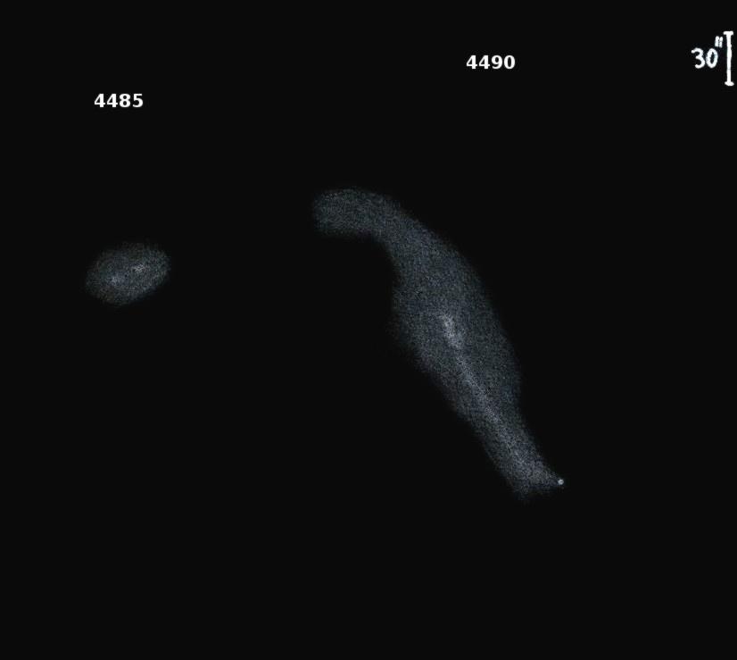 NGC4485_90obs7805.jpg