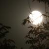 Pleine Lune 5 octobre 2017