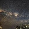 Voie Lactée Aigle et les copines dans les palmiers