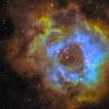 NGC 2239