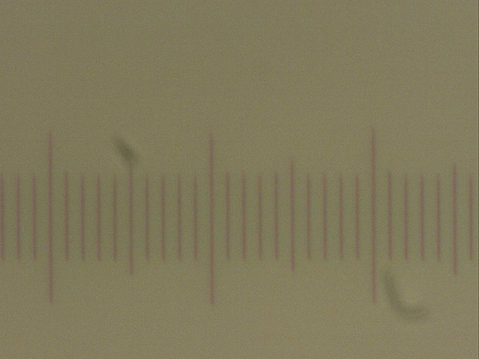 08-Barlow-100mm-1.jpg.5d8e642d619c121a503a4d27a524abe7.jpg