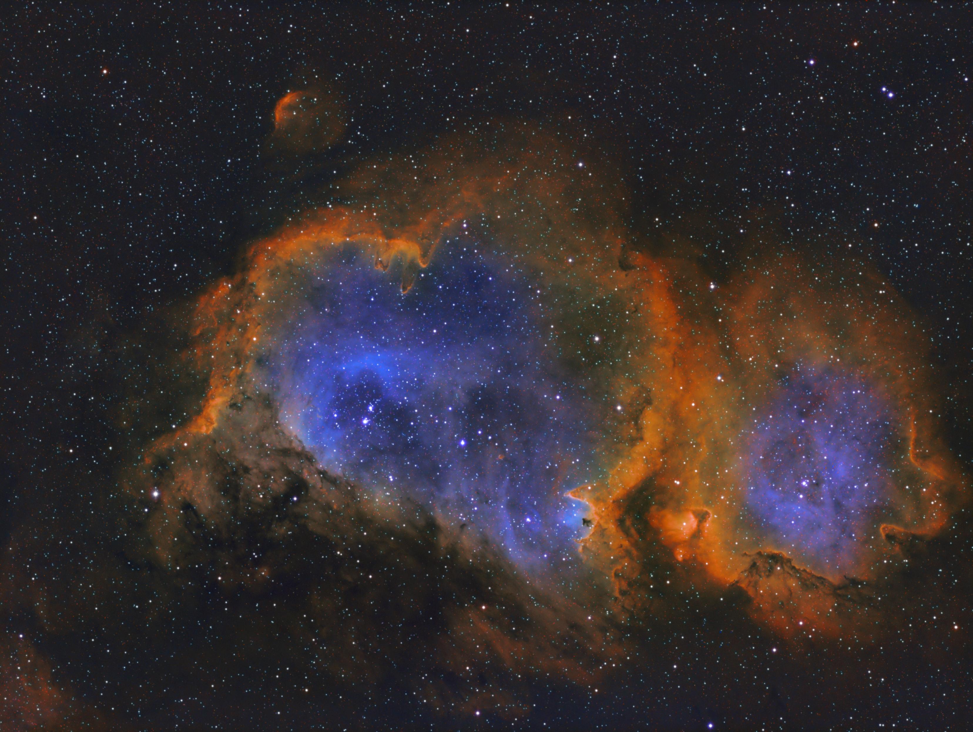 IC1848 sho