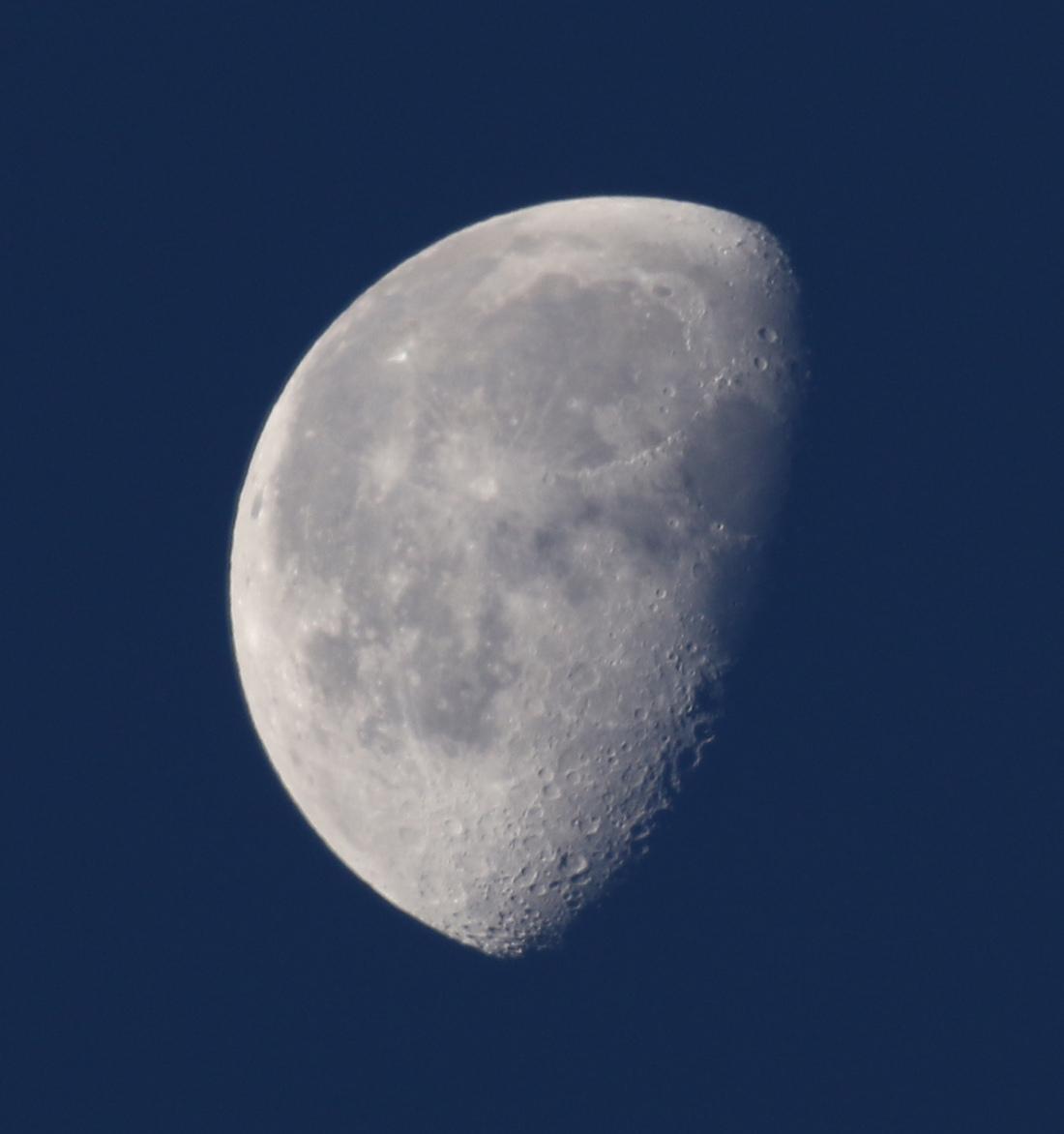 la lune,  au matin du 09/11/2017 (00033594.JPG)