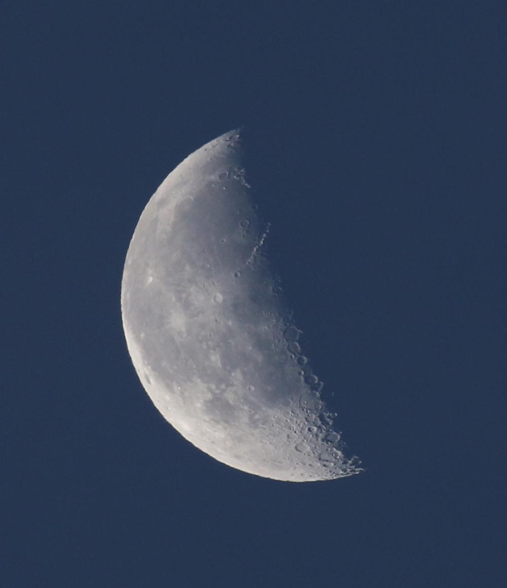 la lune,  au matin du 11/11/2017  (00033613.JPG)
