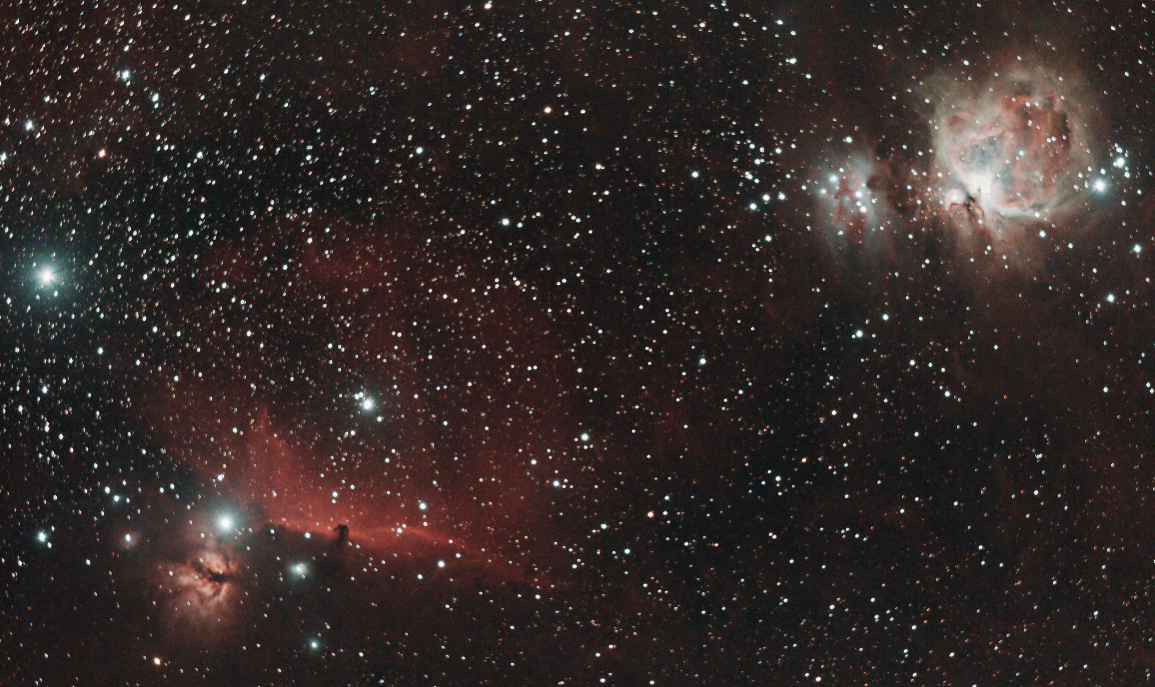 M42 et la tête de cheval