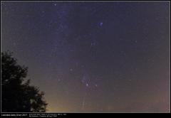 Leonides-20171118_EOS350d-Tokina11-16_2.jpg