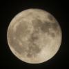 la lune,  au soir du 04/11/2017 (00033504.JPG  pour la pleine lune )