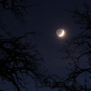 Lune-Albaldah le 22.11.2017