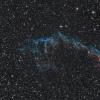 NGC6992 | Les dentelles du cygne