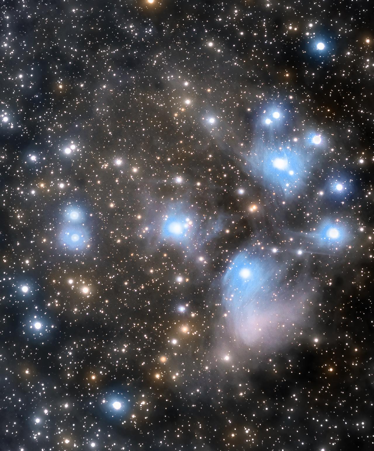 large.5a21534a5662d_Taureau-M45Pliades12