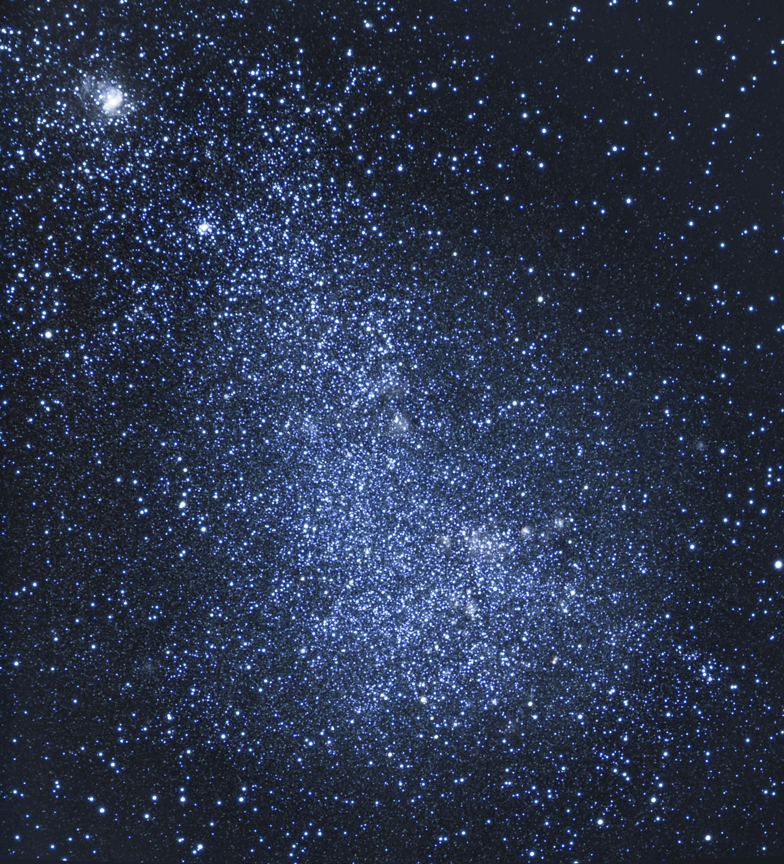 large.Toucan-Petit_Magellan.jpg.694cf596