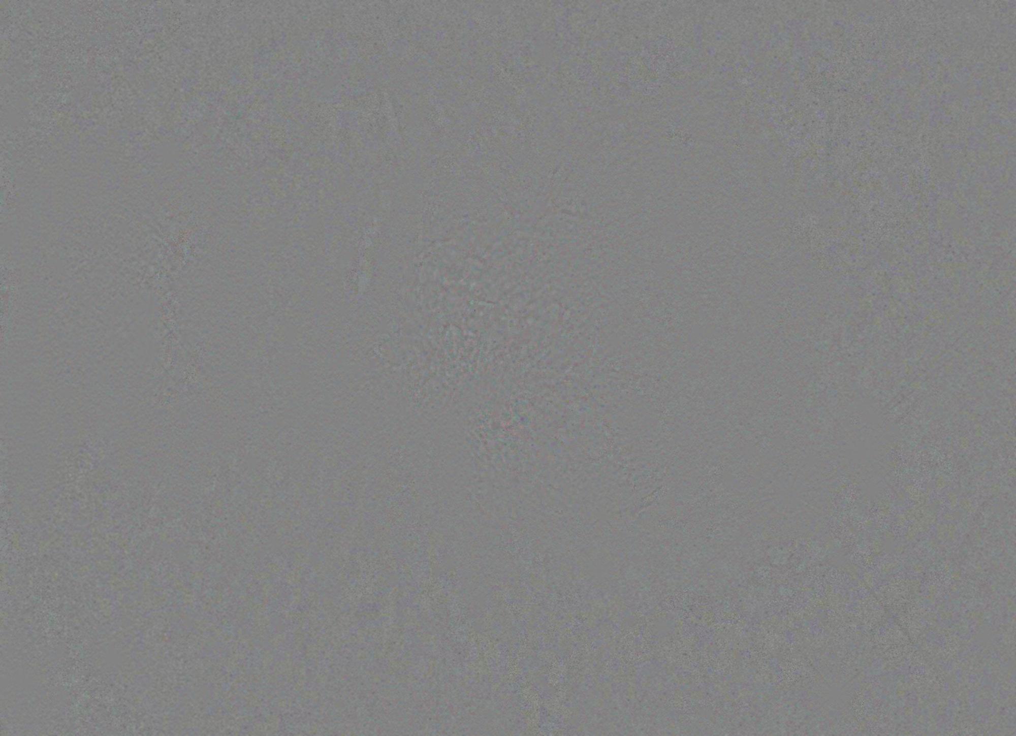 orion_diff.png.8c8c13b38951befc7dc39d7e39da0fb1.png