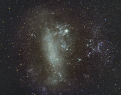 Dorade - Grand Nuage de Magellan 135mm V2