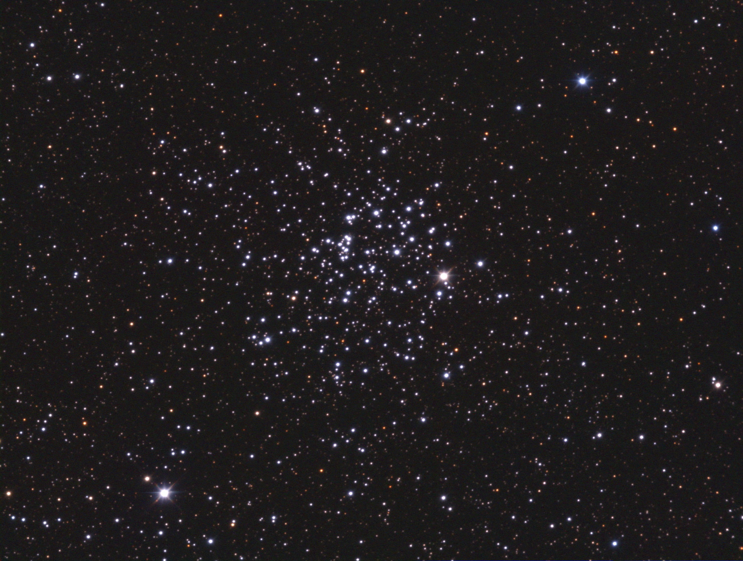 large_m52.jpg.8b0783ccea1ca625bfca7649412ea8aa.jpg