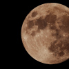 lune du 30 01 18 mimi 1.jpg