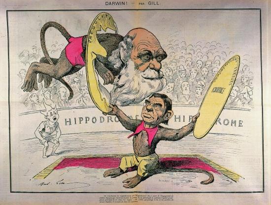 1314102-Caricature_de_Darwin_et_Littré_par_Gill.jpg