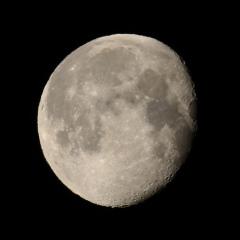 la lune , au matin du 03/02/2018 (37643.JPG)