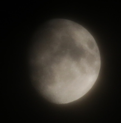 la lune, au soir du 26/02/2018 (38852.JPG)
