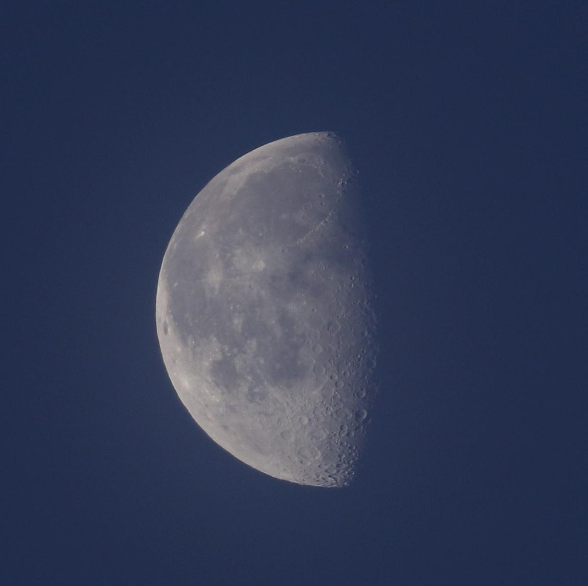 la lune, au matin bleu du 08/03/2018 (39264.JPG)