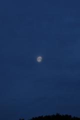 la lune, au matin du 04/03/2018 (39071/065.JPG)