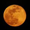 la pleine lune, au soir du 31/03/2018 (40412/421/25/30/34/42/59/66/83/95/40529JPEG)