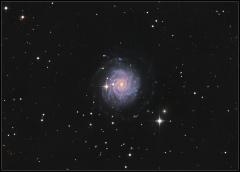 NGC 3344 dans la constellation du petit lion.