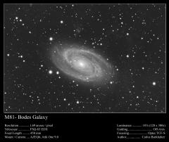 Crop sur M81