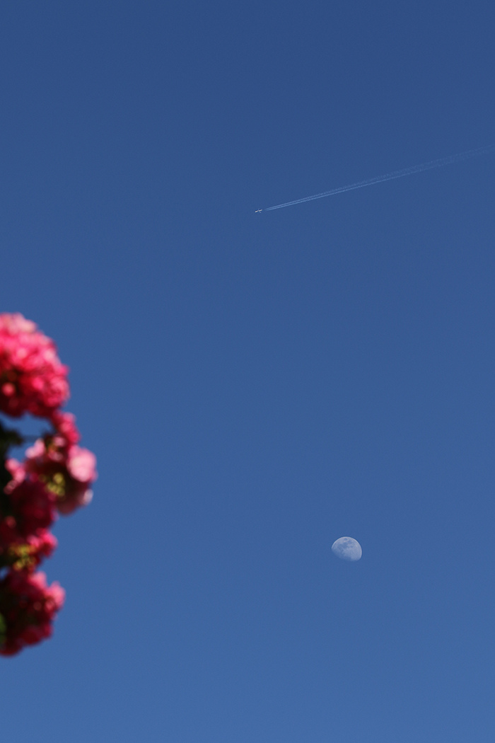 la lune, au soir du 24/05/2018 (43455.JPG)