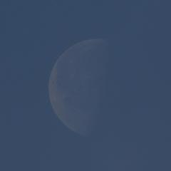 la lune, au matin du 07/05/2018 (42496.JPG)