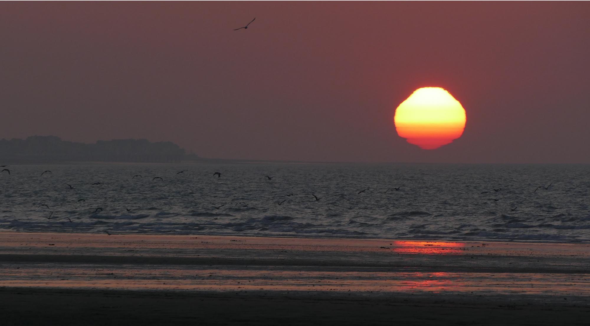 soleil1.thumb.jpg.2d34d34464d4fbbe0d2b9b29926e4b75.jpg